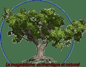 chassard-magnetiseur.com Logo